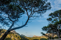 Rocky mountain in Mallorca. Rocky mountain in the countrysides of Mallorca Stock Photos