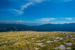 Rocky Mountain Meadow In Summer Fotos de Stock