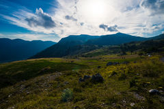 Rocky Mountain Meadow In Summer Stock Images