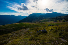 Rocky Mountain Meadow In Summer Royalty Free Stock Images