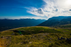 Rocky Mountain Meadow In Summer Royalty Free Stock Photo
