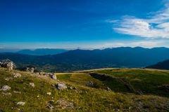 Rocky Mountain Meadow In Summer Stock Photography