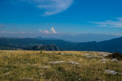 Rocky Mountain Meadow In Summer Royalty Free Stock Image