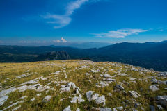 Rocky Mountain Meadow In Summer Royalty Free Stock Photography