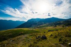 Rocky Mountain Meadow In Summer Stock Photo