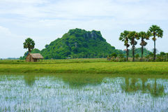 Rocky mountain, Mekong Delta, Vietnam Royalty Free Stock Photography
