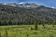 Free Rocky Mountain National Park Royalty Free Stock Images - 75925819