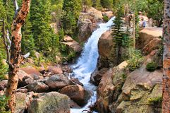 Rocky Mountain National Park at Alberta Falls. Rocky Mountain National Park in Colorado near Estes Park is a premier vacation destination.  Mountains, wildlife royalty free stock photos
