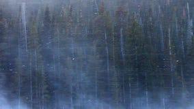 Rocky Mountain National Park Blizzard banque de vidéos