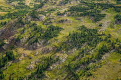 Rocky mountain national park colorado Stock Photos