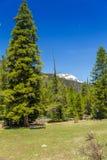 Rocky Mountain National Park Stock Photos