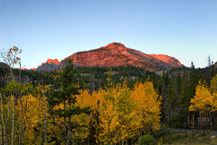 Rocky Mountain National Park in the Fall. Otis Peak above the Fall trees at Rocky Mountain national park stock images