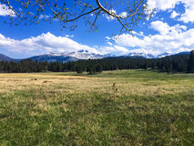 Rocky Mountain National Park. Green fields with mountains in the distance at Rocky Mountain National Park in Colorado stock photography