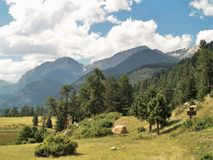 Rocky Mountain National Park. Mountains and meadow at Rocky Mountain National Park near Estes Park, Colorado Stock Image