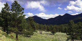 Rocky Mountain National Park. Upper Beaver Meadows area Stock Photography