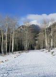 Rocky Mountain National Park Winter-Straße lizenzfreie stockbilder