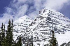 Rocky Mountain och sörjer träd Royaltyfri Bild