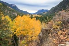 Free Rocky Mountain Park Aspens Stock Photography - 62276342