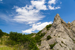 Rocky mountain peak in the forest. In summer Royalty Free Stock Photo