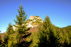 Rocky mountain peak with forest trees in foreground Royalty Free Stock Image
