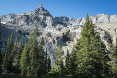 Rocky Mountain peak Royalty Free Stock Photo