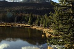 Rocky Mountain Pond Royalty Free Stock Photography