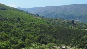 A rocky mountain in Portugal. Day  portugal  rocky mountain nature royalty free stock photo