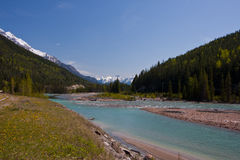 Rocky Mountain River Stock Images