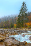 Rocky mountain river in autumn. Multi-color wood. Blue sky Royalty Free Stock Photo