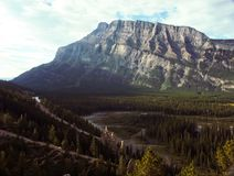 Rocky Mountain River Basin. In Alberta. You can see a forest, river, silt deposits royalty free stock image
