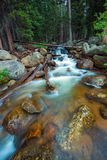 Rocky Mountain River Royalty Free Stock Images