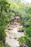 Rocky mountain river gorge and green forest Royalty Free Stock Image