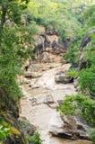 Rocky mountain river gorge Royalty Free Stock Photos