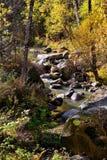 Rocky mountain river. Belokurikha, in the Altai regionn royalty free stock image