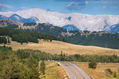 Rocky Mountain Road en verano fotografía de archivo libre de regalías