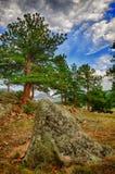 Rocky Mountain Rock. Natural Dolmen in Rocky Mountain national Park Royalty Free Stock Photos