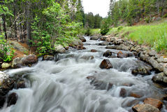 Rocky Mountain Stream. Rocky stream in the Rocky Mountain National Park, Colorado Royalty Free Stock Images