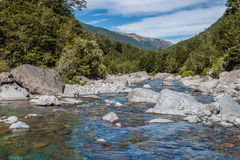 Rocky Mountain Stream. In native beech forest. Hawden river, Mid Canterbury, New Zealand. Southern Alps Stock Images