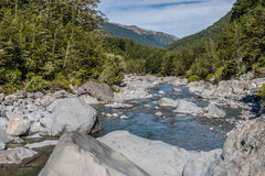 Rocky Mountain Stream. In native beech forest. Hawden river, Mid Canterbury, New Zealand. Southern Alps Stock Image