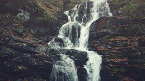 Rocky mountain stream surface autumn wood sight stock video footage