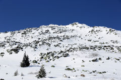 Rocky mountain top in snow Royalty Free Stock Image