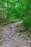 Rocky mountain trail. In Europe Royalty Free Stock Photos