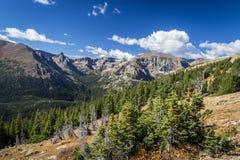 Rocky Mountain Trail Ridge Road Foto de archivo
