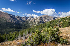 Rocky Mountain Trail Ridge Road Stock Photo