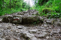 Rocky mountain trail. In Tatras in Poland Royalty Free Stock Images