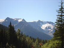 Rocky Mountains. Canadian Rocky Mountains on an August morning Royalty Free Stock Image