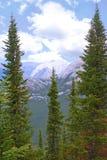 Rocky Mountains. Rockies in Banff, Alberta (Sulpher Mountian Stock Photo
