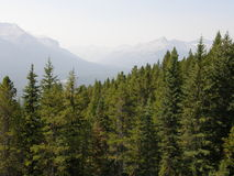 Rocky Mountains in Alberta, Canada. Rocky Mountains in Alberta in Western Canada Royalty Free Stock Images