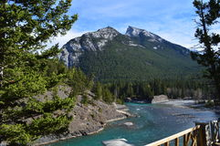 Rocky Mountains Alberta Stock Photography