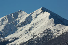 Rocky Mountains-Ansicht 2 Lizenzfreie Stockbilder